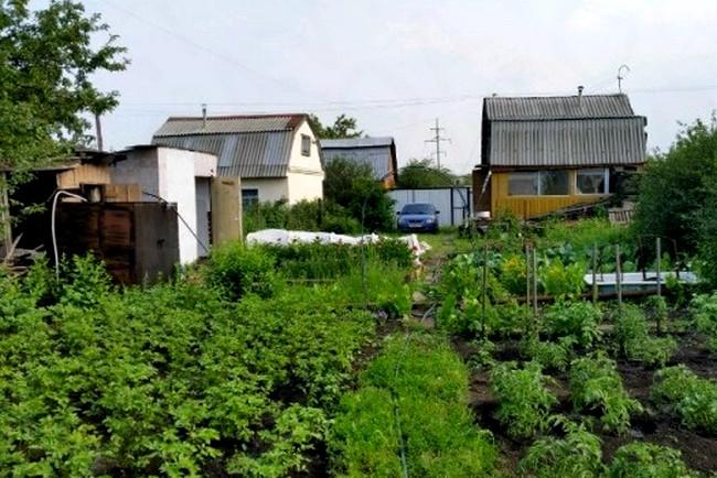 Как оформить в наследство дачный (садовый) участок: особенности наследования земельного участка в СНТ