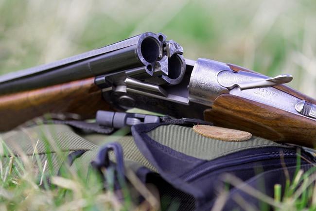 Наследство оружия: как оформить охотничье ружье по наследству и получить лицензию