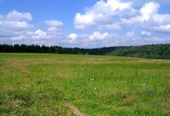 Наследование права на земельный пай: как оформить земельный пай в наследство, условия, документы, этапы, примеры